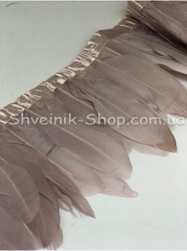 Перо на ленте цвет Пудра Длина : 16 см в упаковке 2 м