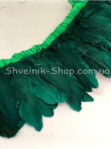 Перо на ленте цвет Зеленый Длина : 16 см в упаковке 2 м