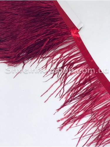 Перо Страуса Длина пера 10 см в упаковке 9,2 метра цвет Бордо