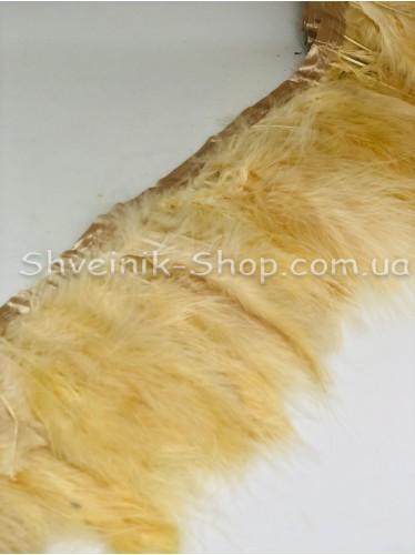 Перо на ленте цвет Бежевый Длина : 16 см в упаковке 2 м