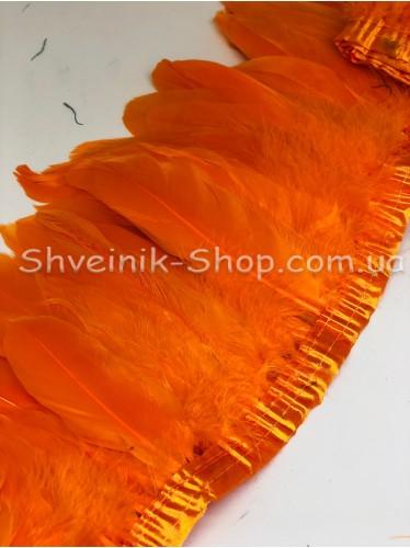 Перо на ленте цвет Оранжевый Длина : 16 см в упаковке 2 м