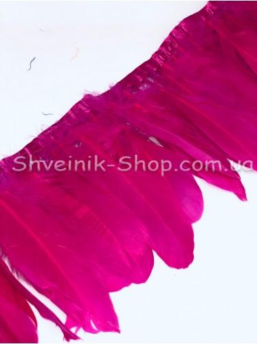 Перо на ленте цвет Малина Длина : 16 см в упаковке 2 м