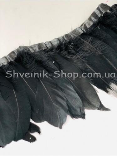 Перо на ленте цвет Черный Длина : 16 см в упаковке 2 м