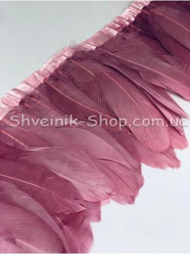 Перо на ленте цвет Фрез Длина : 16 см в упаковке 2 м