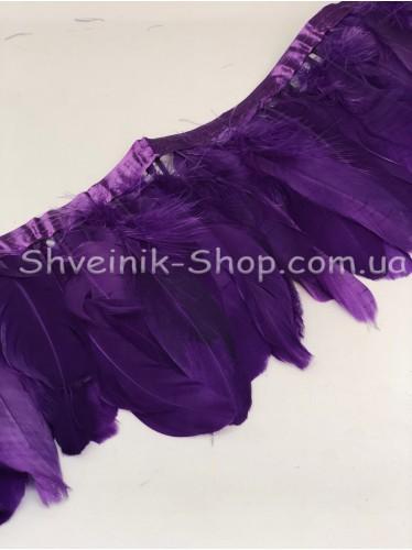 Перо на ленте цвет Фиолетовый Длина : 16 см в упаковке 2 м