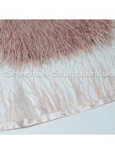 Перо Страуса Длина пера 10 см в упаковке 9,2 метра цвет Бледная Пудра