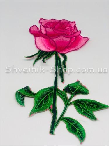 Аппликация роза в упаковке 20шт  цена за упаковку